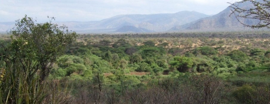 Hills Surrounding Tassia Lodge