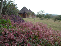 Ngobit River Lodge
